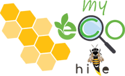 MyEcoHive.com | Social Media for Business Network & Marketplace
